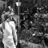 Feria de flores en Mallasa