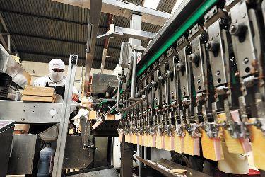 fabrica delizia
