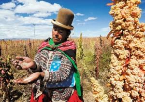Oruro-productora-quinua