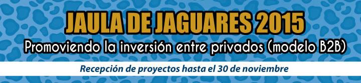 jaguares concurso