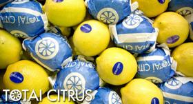 limones-totai-citrus
