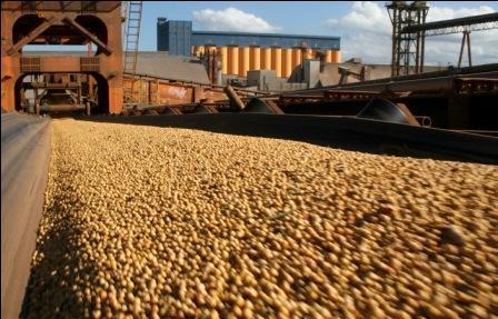 Exportacion soya