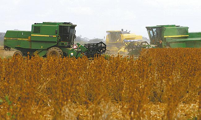 El cultivo de soya sigue siendo el más importante en el departamento superando 1 millón de hectáreas./El Deber