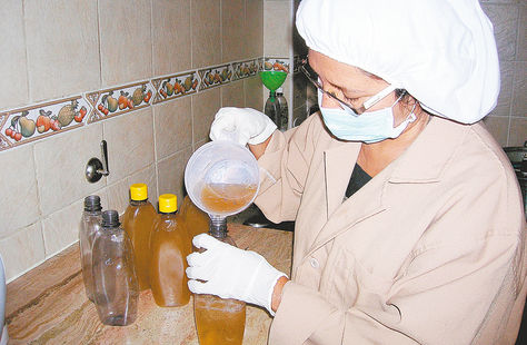 Produccion-Bustillos-Gaia-Terra-Cochabamba